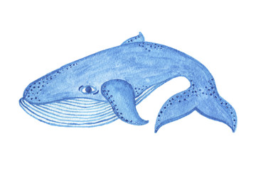 Watercolor blue whale object, cartoon style