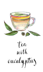 Eucalyptus leaves and herbal tea