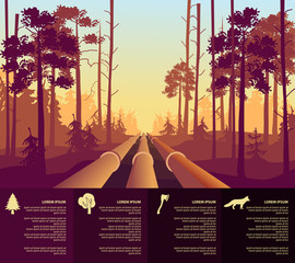 oil the pipeline in the forest