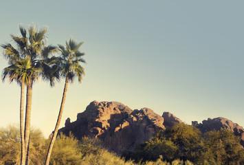 Wall Mural - Camelback Mountain overlooking Phoenix,Az,USA