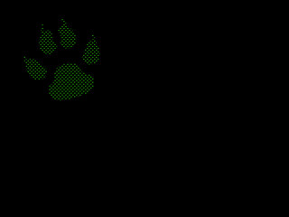 animal footprint on black background made from green points