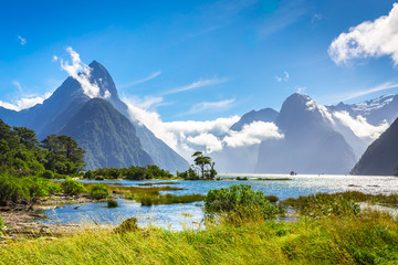 Milford Sound #6, New Zealand Wall mural
