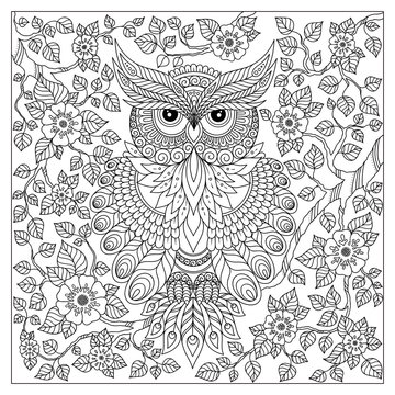 Adult coloring book page. Owl sitting on blossom branch