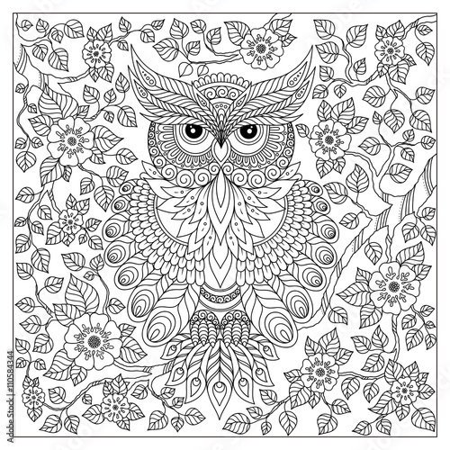 Adult Coloring Book Page Owl Sitting On Blossom Branch Stock Image