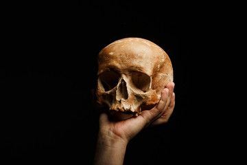 hand holding a skull is isolated on black background
