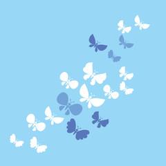 light butterflies vector illustration