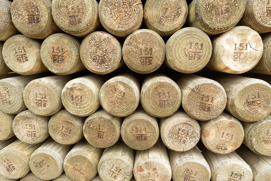 Pile of Wooden Fence Posts