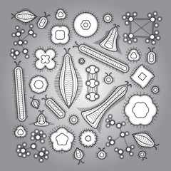hand created vector microbe things decoration element