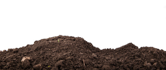 Fototapeta heap of soil isolated on white background obraz