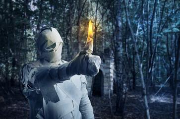 Man in toilet paper burning