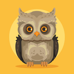 Vector flat cartoon owl illustration