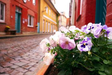 Lauenburger Altstadt