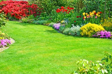 Gartenansicht mit verschiedenen Blumen