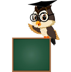 illustration of Owl teacher at blackboard