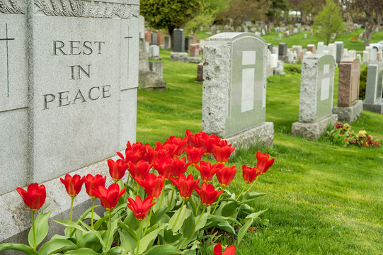 """Headstones in a cemetary with red tulips and """"rest in peace"""" inscription."""