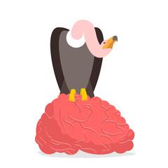 Vultures and brain. Griffon bite mind. Condor and entral nervous