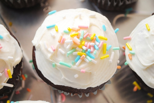 A Chocolate Cupcake with Vanilla Frosting Over White
