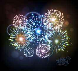 Vector holiday fireworks