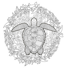 Hand drawn swimming turtle with high details