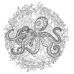 Octopus with high details.