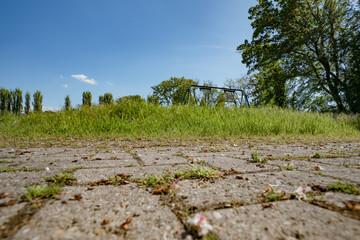 old cobblestones in park