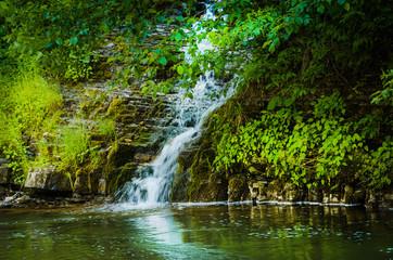 Mountain stream in summer