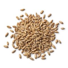 Heap of  Spelt wheat