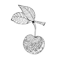 Doodles Ornament Zentangle Cherry