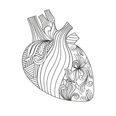Coloring illustration of heart.