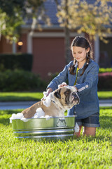 Girl Child Washing Her Pet Dog In A Tub
