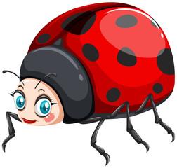 Ladybug with happy face