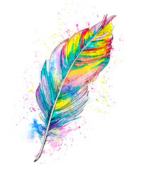 hand painted watercolor illustration of a feather