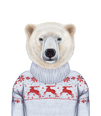 Animals as a human. Portrait of Polar Bear in sweater. Hand-drawn illustration, digitally colored.