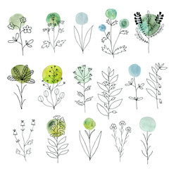 Vector floral decorative set. Colorful watercolor splashes under flowers. Cute flowers and leaves branches for design. Floral vector set. Herbs and flowers. Hand sketched floral collection.