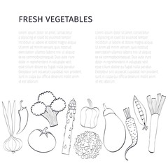 Fresh vegetables vector concept and background. Isolated vegetables, can be used in restaurant menu, cooking books and organic farm labels.