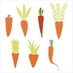 Set of hand drawn carrots. Vector illustration.
