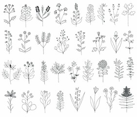 Big floral Set. Hand drawn flowers on white background made in Vector. Herbarium Set. Beautiful design elements for Wedding Invitations, Romantic Templates, Birthday Cards, Postcards, Patterns.