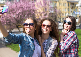 Young happy teenage girls making selfie and having fun in summer park