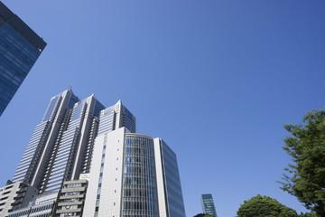 新宿高層ビル街快晴 青空 緑 春 パークタワー前 コピースペース
