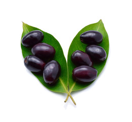 Jambolan plum, Java plum (Syzygium cumini) on white background