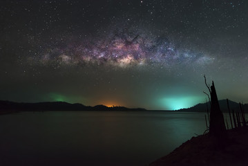 milky way and the dead tree