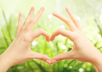 Female hands in shape of heart, on blurred nature background