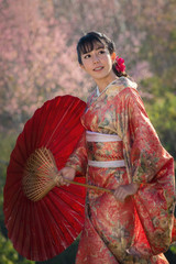 Girl in kimono Japanese Tradition dress