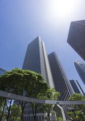 新宿高層ビル街 快晴 青空 新緑 緑 春 超広角で見上げる 太陽 フレア 逆光