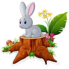 Cute bunny posing on tree stump