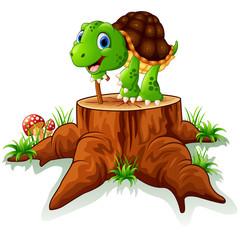 old turtle posing on tree stump