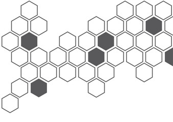 dark grey hexagon white background wall pattern