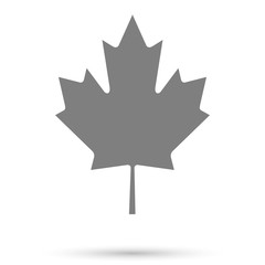 Canadian maple leaf icon with shadow on a white background, stylish vector illustration for web design
