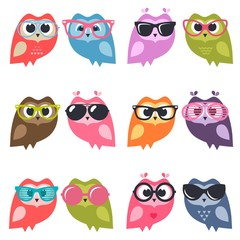 Cute owlets and owls with sunglasses