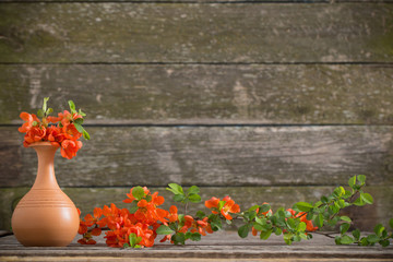 red spring flowers on wooden background